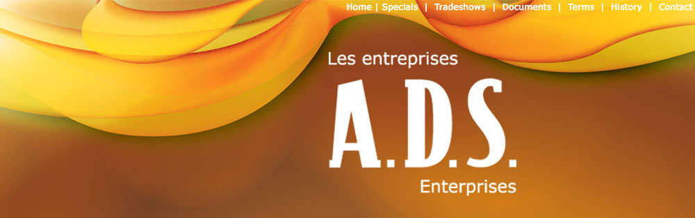 ADS Enterprises Inc